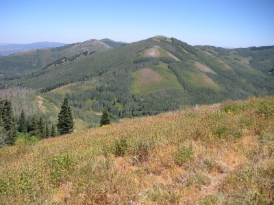 Little Water Peak