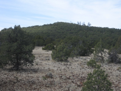 North Cebollita Mesa